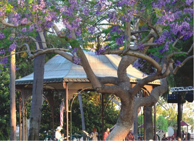 Spreckels Park Bandstand